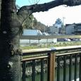 19 堀端橋より名古屋城を