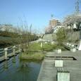 19 親水公園