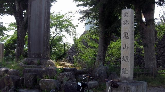 20054